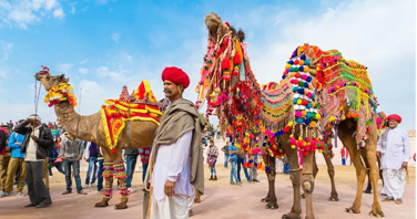 Pushkar Camel Fair In Rajasthan