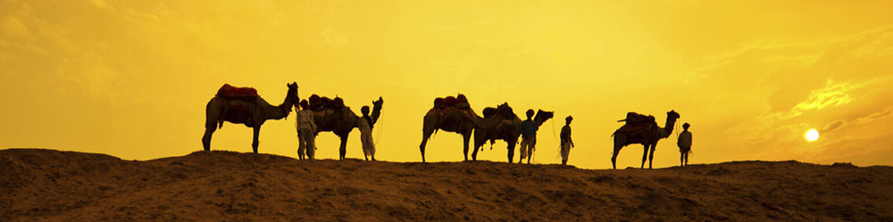royal-rajasthan-tour